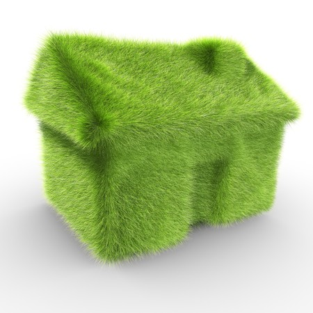 A house covered with grass symbolizing an ecologic house