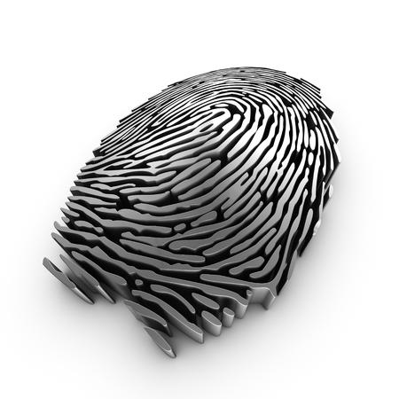 fingerprint: 3d fingerprint representation for authentication or recognition