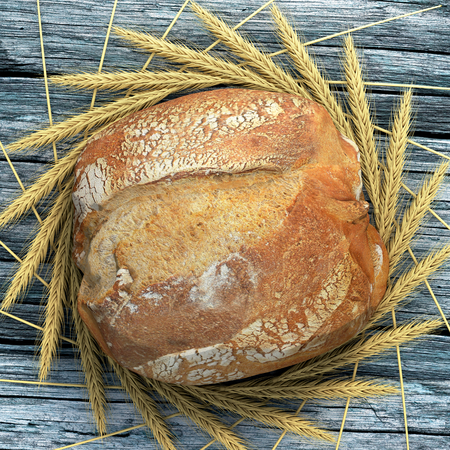 french boule: A bread campaign on a wooden and old table surrounded by wheat ears. We can almost smell, touch and eat this bread.