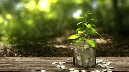 Plant growing from money jar. Concept of financial investment. 스톡 콘텐츠