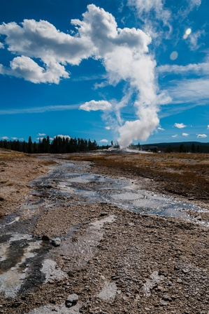 predictable: Vertical view of famous Old Faithful geyser in Yellowstone NP  One of the most famous geyser was named in 1870 and the name refers to its predictable eruption of hot water aproximatly every 91 minutes
