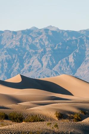 Vertical view of desert dunes in Death Valley National Park
