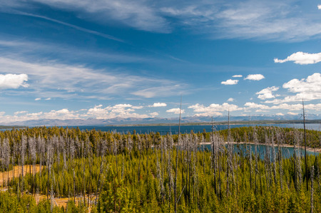 Scenic view of landscape in Yellowstone NP, Wyoming. photo