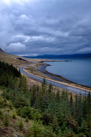 Vertical view of dramatic icelandic landscape with empty road next to a fjord.