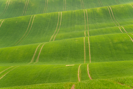 Scenic view of beautiful Moravian Tuscany landscape in South Moravia, Czech Republic. Stock Photo