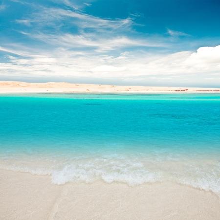 Caribbean beach and summer sky photo