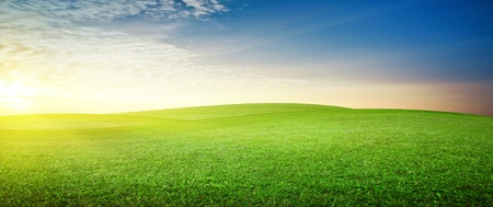 good weather: Panoramic meadow. Summer good weather Stock Photo
