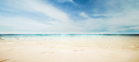 beach panorama: Sea panorama. Summer tropical beach