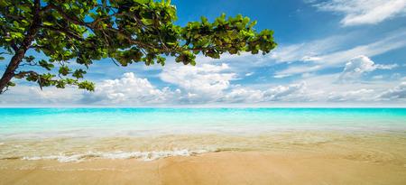 lagoon: Lagoon. Tropical resort panorama shot