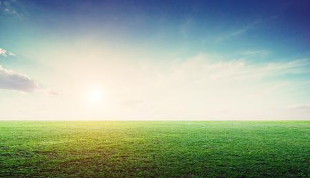 Panoramica del paesaggio del campo in erba. Estate prato natura