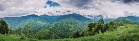 Mountain forest and clouds. Summer panoramic landscape