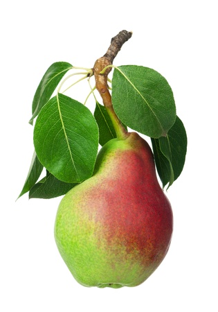 Ripe pear with leaf isolated on white background Stock Photo - 15331851