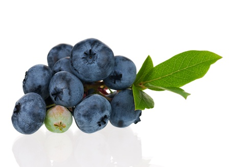 Blueberries on white photo