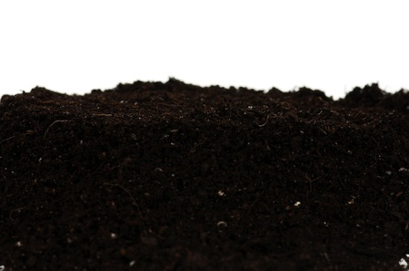 Organic soil Stock Photo