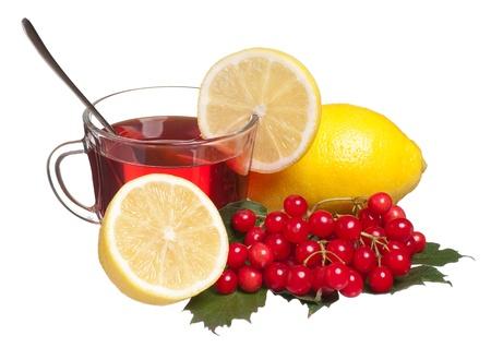 guelder rose berry: Anti-virus remedy