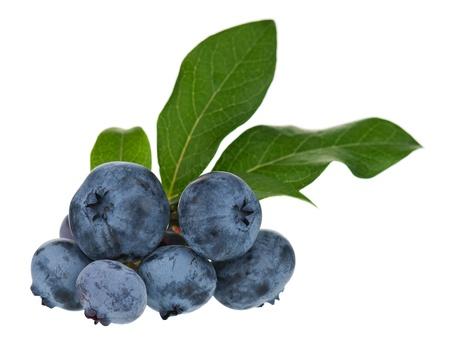 Ripe blueberries Reklamní fotografie - 18390132