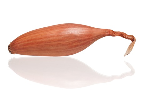 shallot: Onion shallot