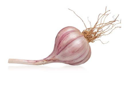 clean artery: Garlic bulb Stock Photo