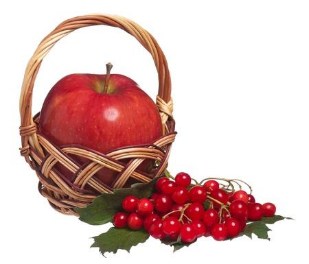 arrow wood: Manzana madura en una cesta de mimbre con bayas de madera de flecha aislados en el fondo blanco
