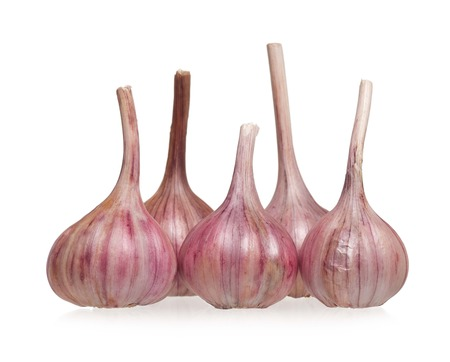 clean artery: Garlic bulb isolated on white background cutout Stock Photo