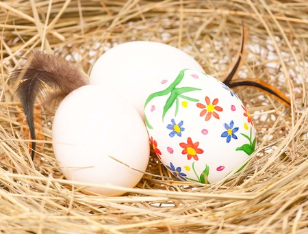 Colorful Easter eggs in a birds nest with feathers close-up photo