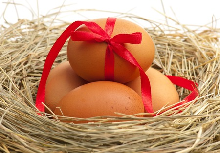 Raw yellow eggs decorated with ribbon in a birds nest over white background photo
