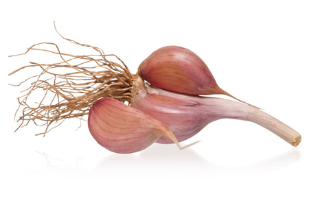 clean artery: Garlic bulb with cloves isolated on white background cutout