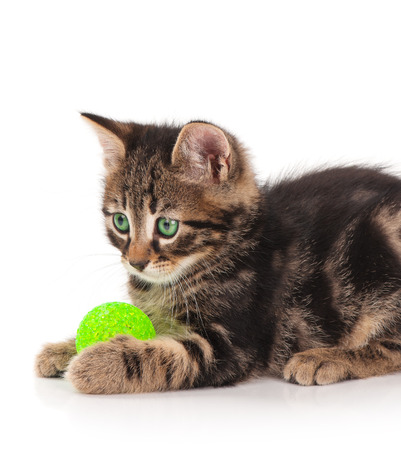 Cute little kitten with thread ball isolated on white background photo