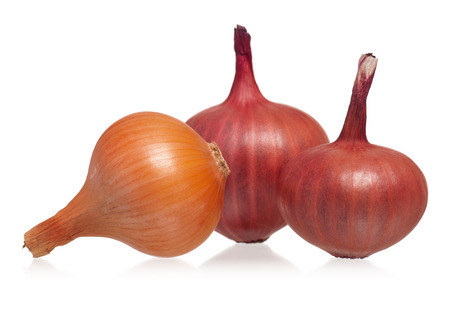 raw gold: Raw red and gold onions isolated on white background