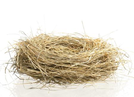 Pájaros nido vacío aislado en el fondo blanco Foto de archivo