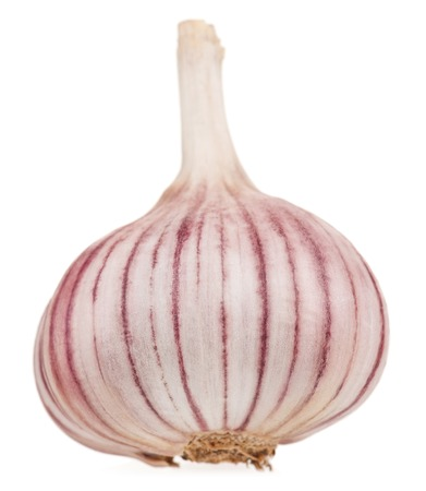 clean artery: Fresh garlic bulb isolated on white background cutout