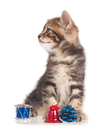 blind child: Cute kitten with accessories of celebration of new year isolated on white background
