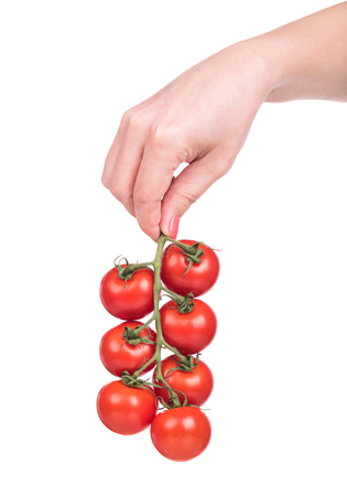 Fresh red tomatoes in a woman hand isolated on white background Stock Photo - 78648591