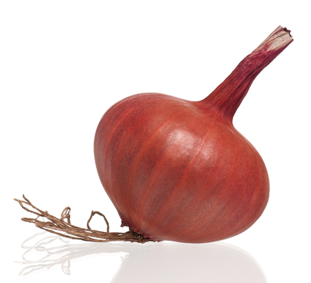 One gold onion with long roots isolated on white background Imagens