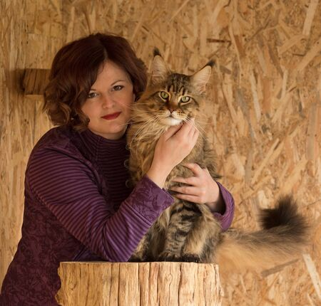 Fluffy Maine Coon cat with young woman over dirty yellow background Reklamní fotografie - 134848098