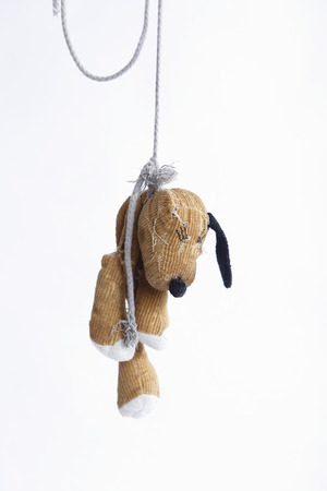 Hanging stuffed dog in front of a white background Banco de Imagens