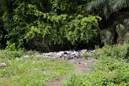 Landfill between trees and palms in Africa