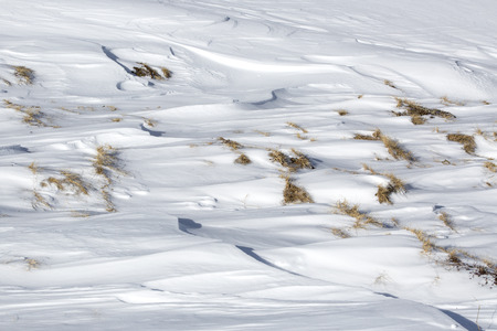 snowdrifts: Closeup of the structures of snowdrifts in sunlight Stock Photo