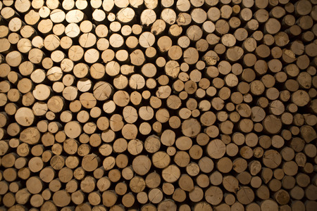 combustible: Closeup of round and stacked firewood