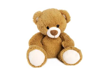 Brown teddy bear isolated in front of a white background