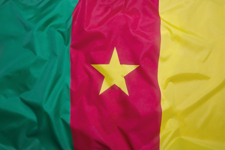 cameroon: Flag of Cameroon as a background