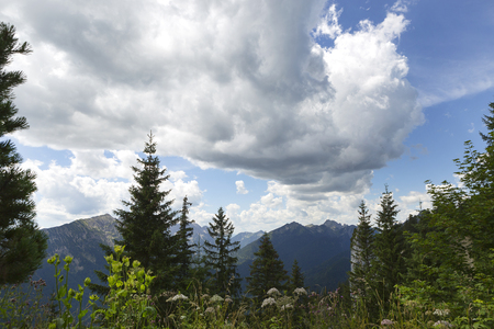 Panorama view of Bavarian Alps, mountain Puerschling, Germany Stock Photo