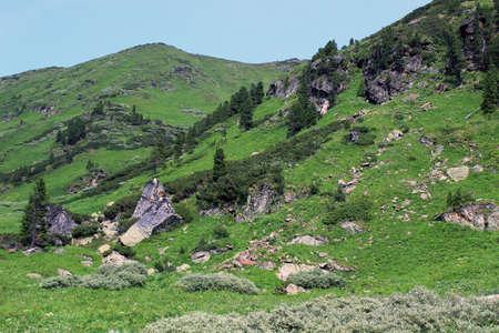Siberian taiga. Mountains.