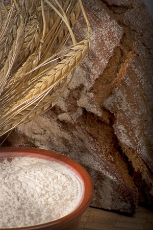 cereals and agricultural products photo