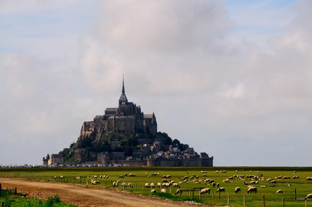 Mt  Saint Michel with sheeps in the evening photo