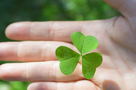 living things: Green cloverleaf holding in the right hand