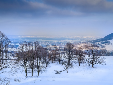 Winter landscape with clouds, snow, trees and village in evening mood photo