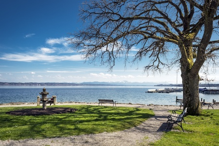 Lake Starnberg with bench, tree and overlooking the Alps in sunny weather and blue sky Stock Photo