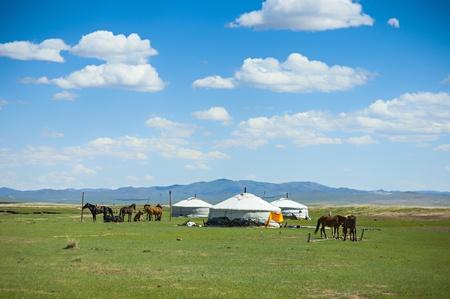 パオとモンゴルの草原における馬 写真素材