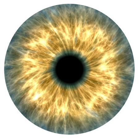 노란색과 회색 인간의 홍채의 그림